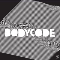 BODYCODE/THE CONSERVATION OF ELECTRICAL CHARGE